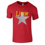 300x300 Little Star